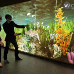 WorldViz expands its VR engine support for 3D multi-projection CAVE setups