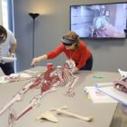 GigXR and Elsevier unveil expanded remote features for their HoloHuman 3D immersive anatomy app
